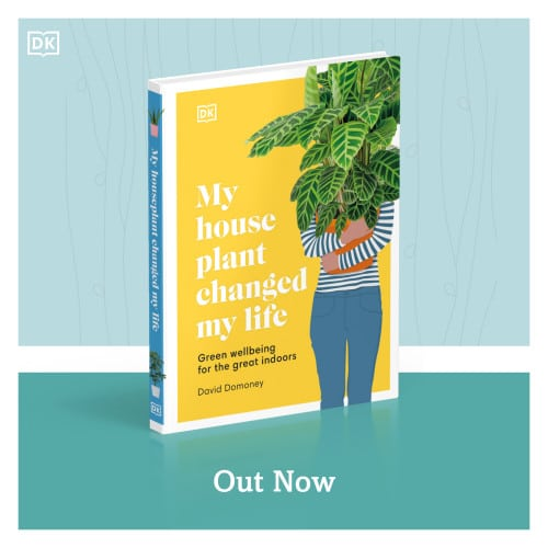 My Houseplant Changed My Life book