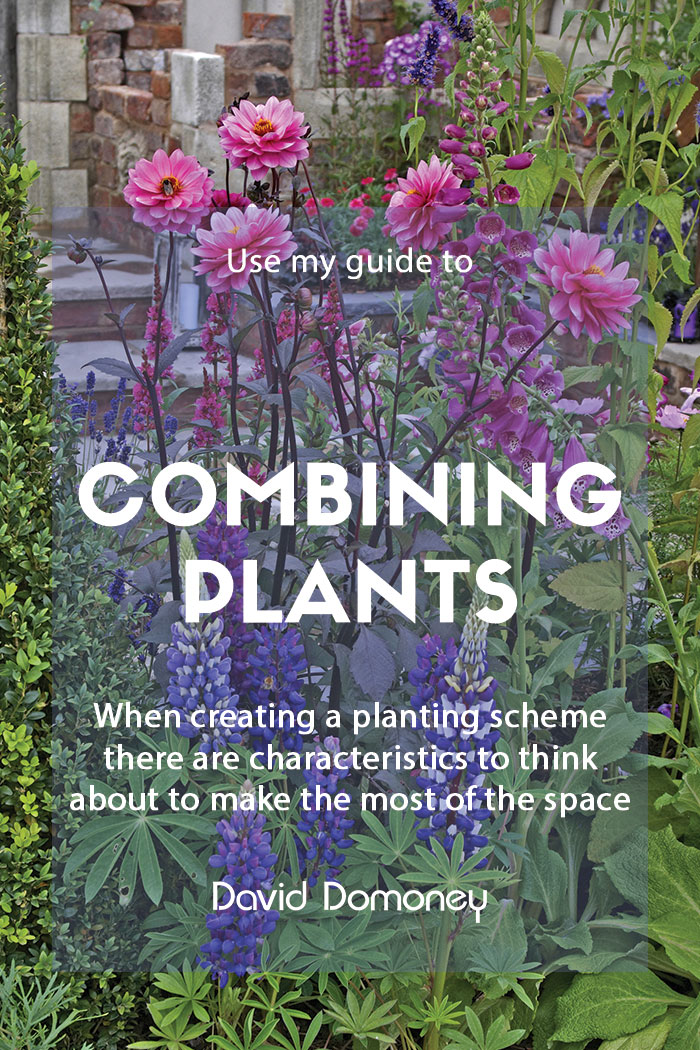 A guide to combining plants