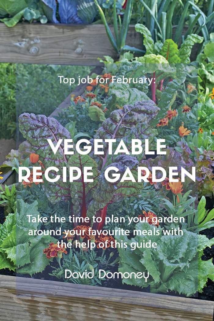 Top job for February - Planning vegetable gardens for recipes