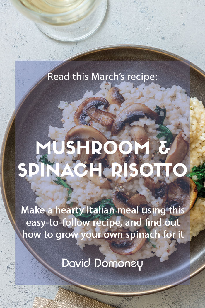 Recipe March Mushroom and spinach risotto