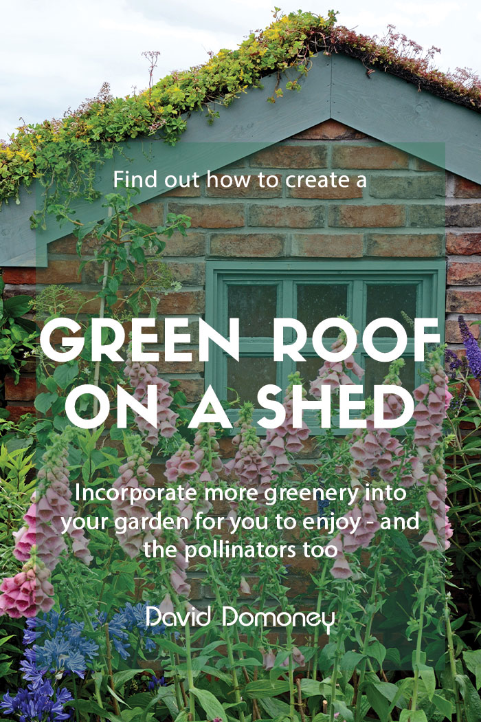 How to create a green roof on your garden shed