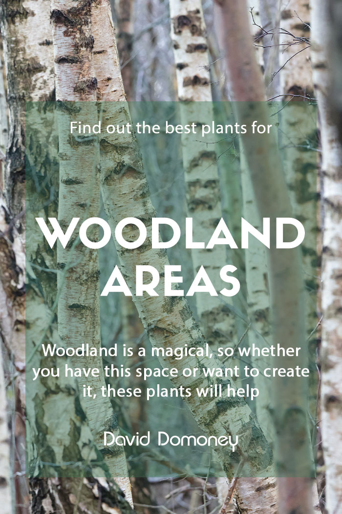 Plants for purpose Plants for woodland