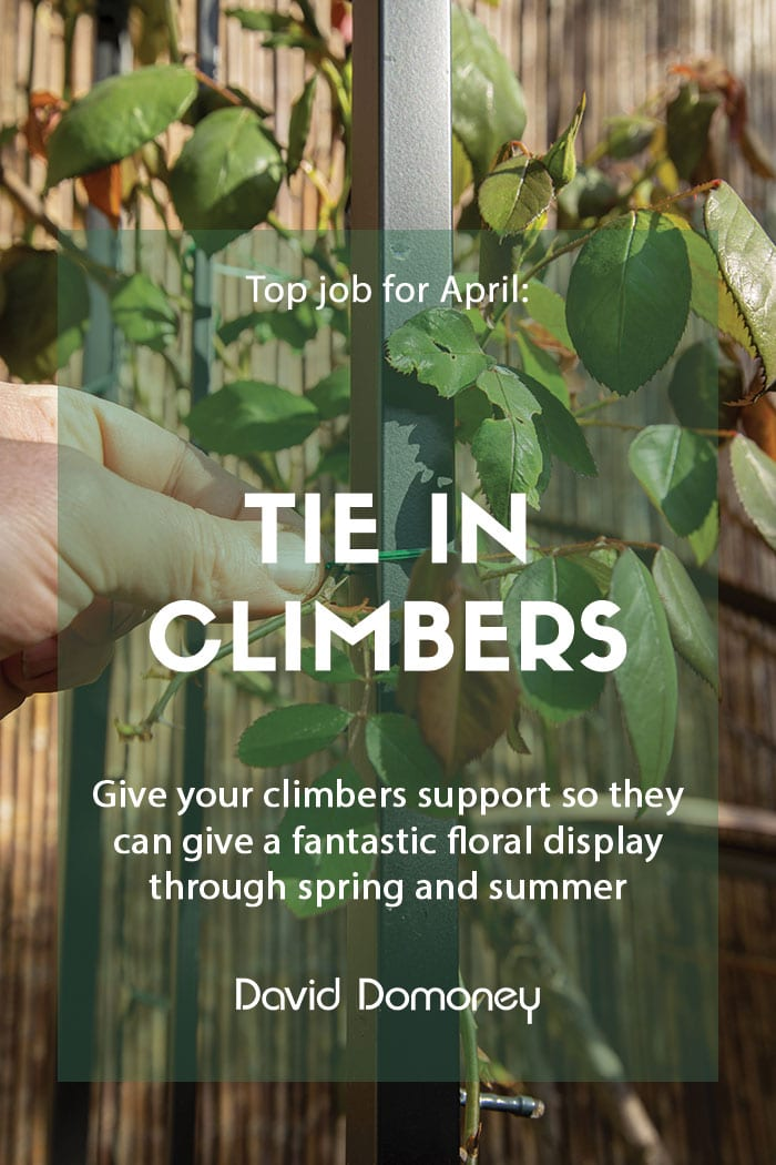 Top job for April Tie in climbers