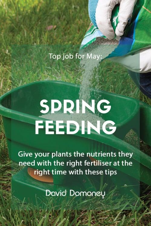 Top job for May - Spring feeding