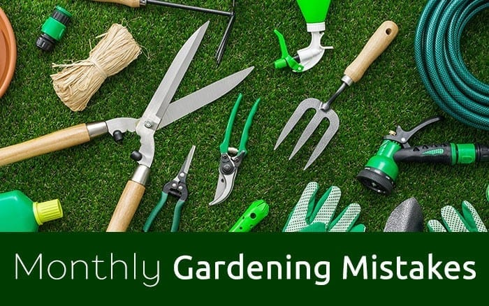 monthly-gardening-mistakes