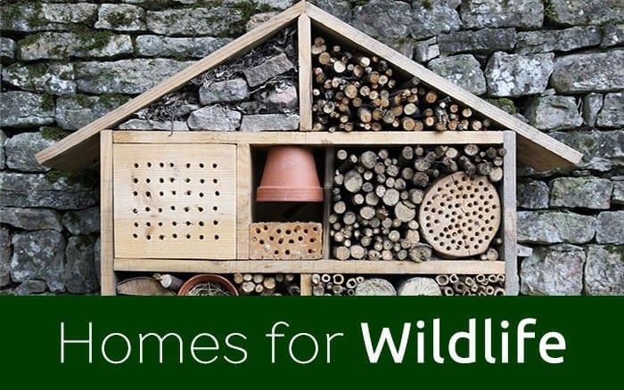 wildlife-habitats-related-blog